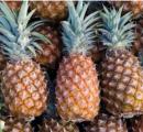 Gebakken ananas met ananasijs en mascarponesaus